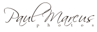 2011 Logo-black